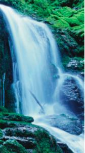 Vattenfall-168x300