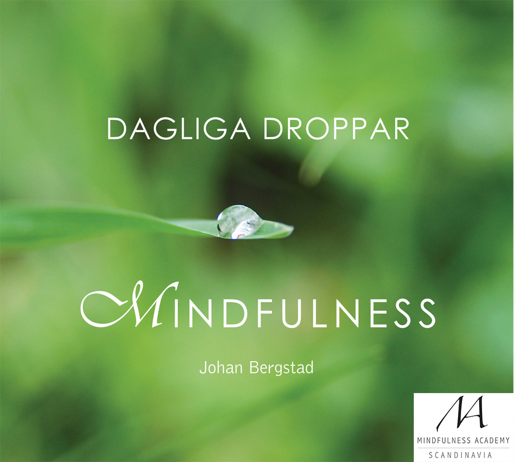 MP3: Dagliga droppar mindfulness